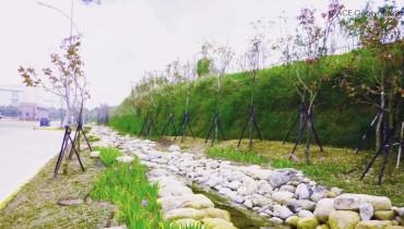 Muro de tierra reforzada, Parque Científico Central de Taiwán, Taichung, Taiwán