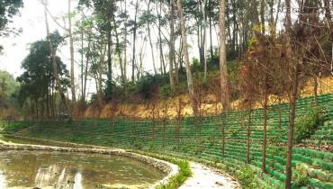 Proyecto de rehabilitación del estanque de la granja Shihmen en el condado de Miaoli, Taiwán